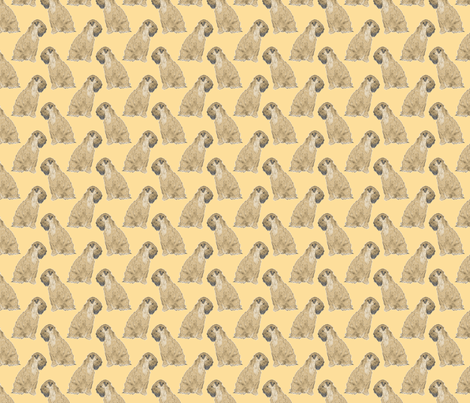 Sitting Wheaten Terriers - small gold fabric by rusticcorgi on Spoonflower - custom fabric