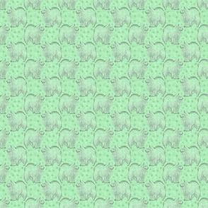 Posing American Eskimo dog - small green