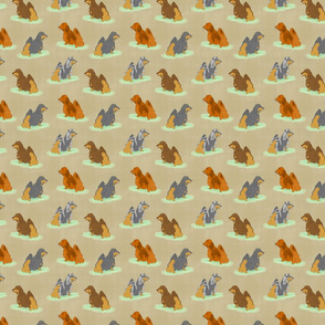 Standing Longhaired Dachshunds - small tan linen