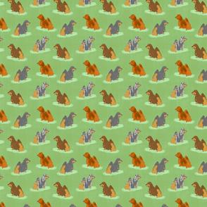 Standing Longhaired Dachshunds - small green linen