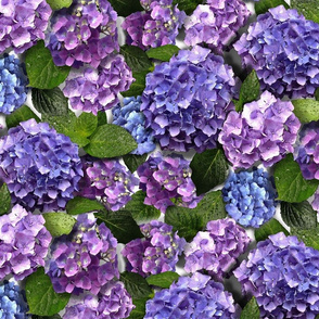 Hydrangea Heavy Floral