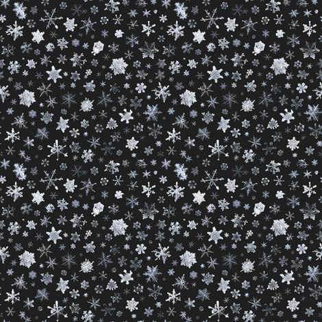 photographic snowflakes on charcoal (small snowflakes) fabric by weavingmajor on Spoonflower - custom fabric