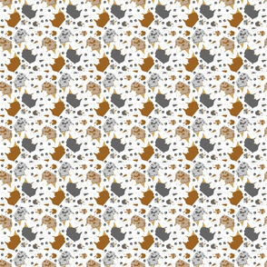 Trotting Australian Shepherds and paw prints - tiny white