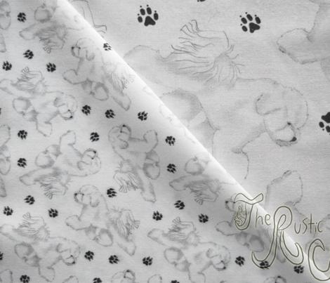 Trotting Bichon Frise and paw prints - tiny white