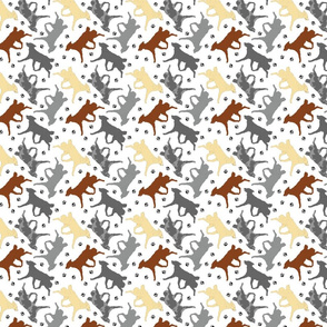 Trotting Mudi and paw prints - tiny white