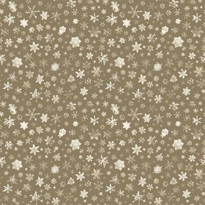 small photographic snowflakes on tan