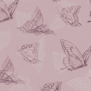butterfly_mauve