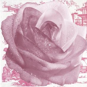Oriental Rainbow Rose