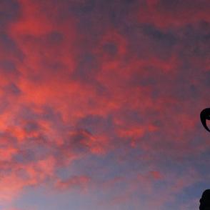 Snowcatcher Bighorn Silhouette