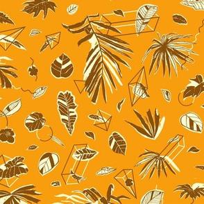 Botanical Geometry [desert]
