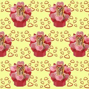 Yorkie valentin