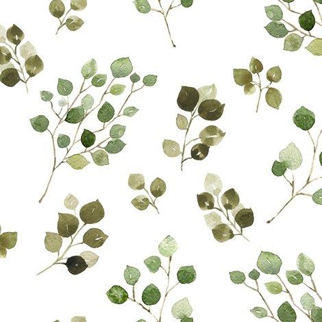 Reucalyptus-01_shop_preview