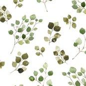 Reucalyptus-01_shop_thumb