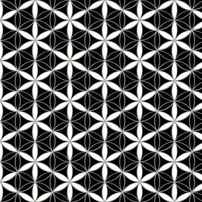 Flower_of_Life_Honey cell_hexagon _cube_pattern