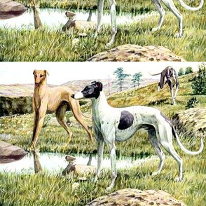 dogs greyhounds grayhounds hounds mountains hills trees nature flowers grass pools lakes stones boulders vintage