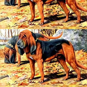 dogs bloodhounds hounds forests trees autumn leaves vintage retro animals