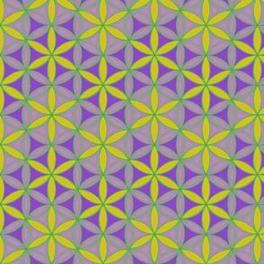 Flower_of_Life_Pattern_8