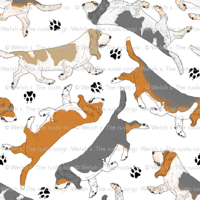 Trotting Basset hounds and paw prints - tiny white