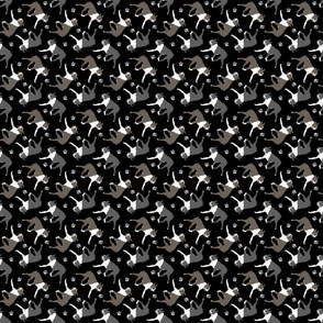 Trotting Boston Terriers and paw prints - tiny black