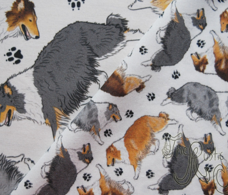 Trotting rough coated Collies and paw prints - tiny white
