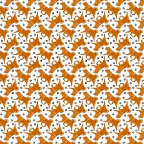 Trotting Finnish spitz and paw prints - tiny white