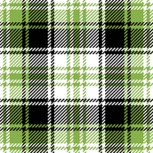 tartan : sewing green