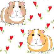 guinea pigs with red heart flowers