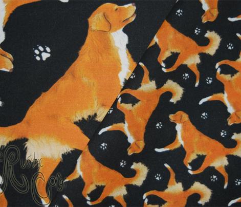 Trotting Nova Scotia duck tolling Retriever and paw prints - tiny black