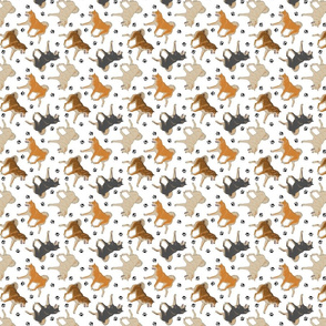 Trotting Shiba Inu and paw prints - tiny white