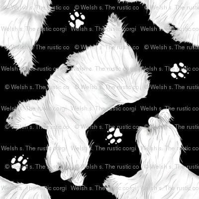 Trotting Maltese and paw prints - tiny black