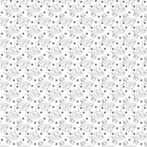 Trotting American Eskimo Dog and paw prints - tiny white