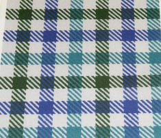 Rtricolor_gingham_green_blue_teal_comment_746469_thumb