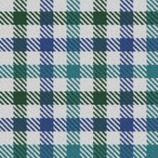 Rtricolor_gingham_green_blue_teal_shop_thumb