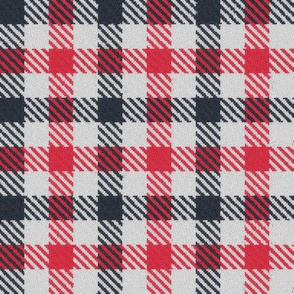Black and Red Gingham