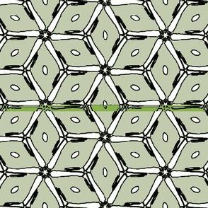 Stare-green