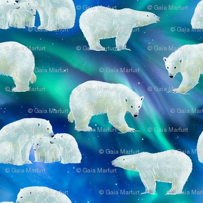 bear-borealis