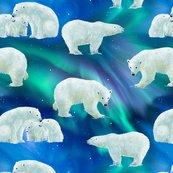 Rbear-borealis_shop_thumb
