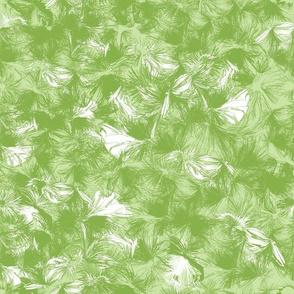 greenery grass