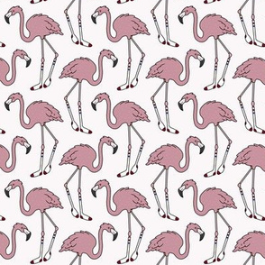 Knee High Flamingos