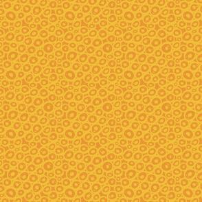 Cells: Orange