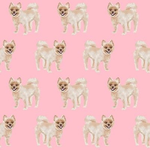 shorthaired pomeranian dog fabric cute dog breeds fabric sewing dog fabric