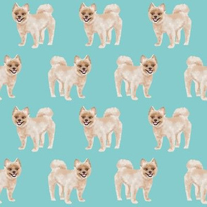 shorthaired pomeranian fabric - cute dog breeds fabric