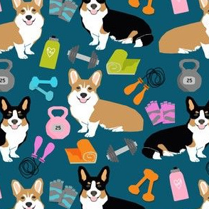 corgi workout fabric fitness new years resolutions train lift fitness dogs