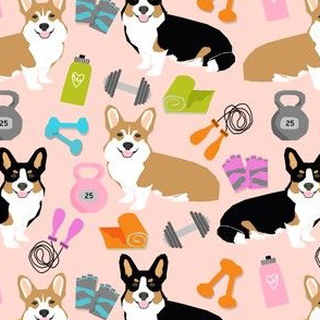 corgis workout fitness fabric jump rope dumbbells kettlebell fabric