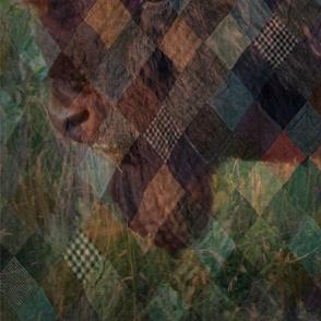 buffalo cheater quilt