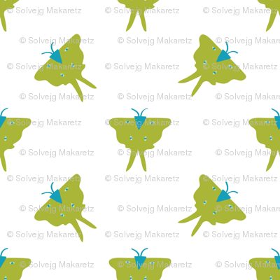 Luna Moth white