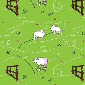 Lamb Adventures