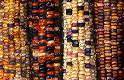 Corn2_preview