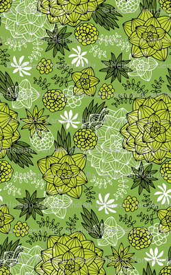 graphic succulents greenery