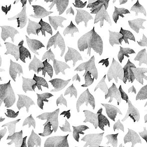 Vogelschwarm - Swarm of Birds